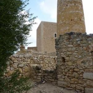 XXIV Diada del Castell 2011