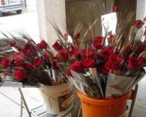 Diada de Sant Jordi 2010
