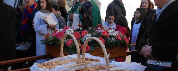 Èxit de participació a la Diada de Sant Antoni organitzada pel CCR